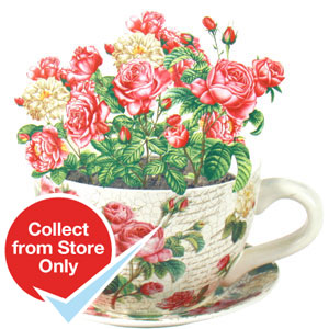Buy Giant Ceramic Tea Cup and Saucer Planter: Floral Rose at Home ...
