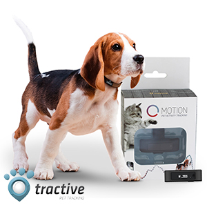 Picture of Tractive Motion Pet Activity Tracker