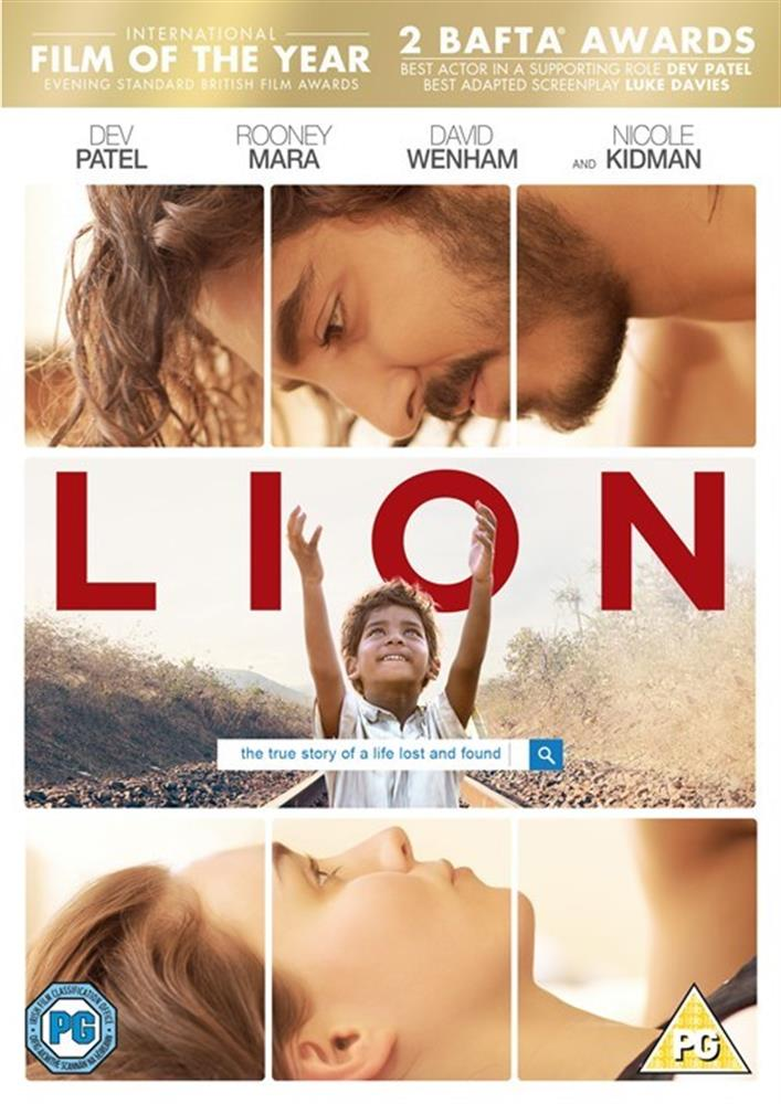 Picture of Lion DVD