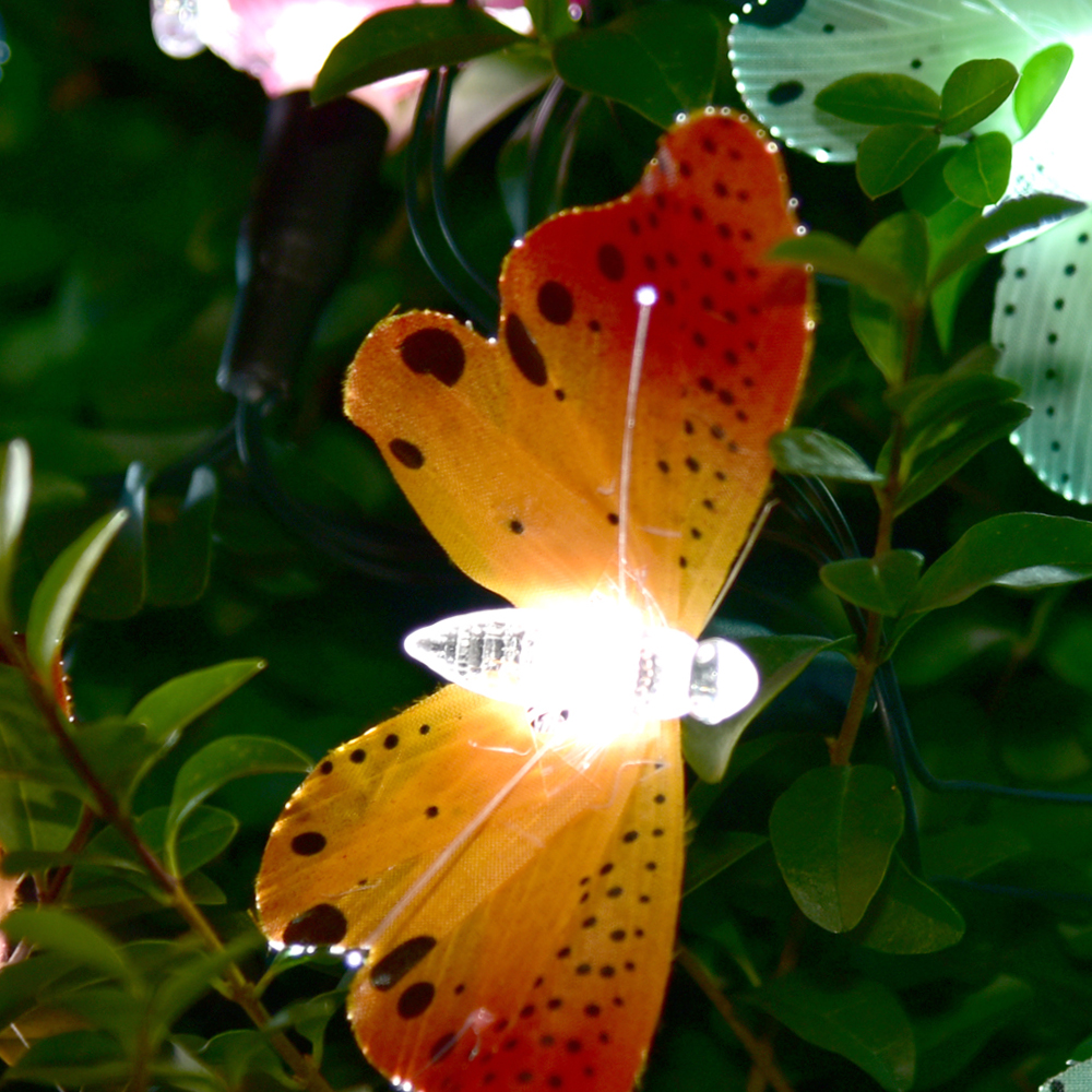 Picture of Garden Solar Powered Fibre Optic Butterfly String Lights