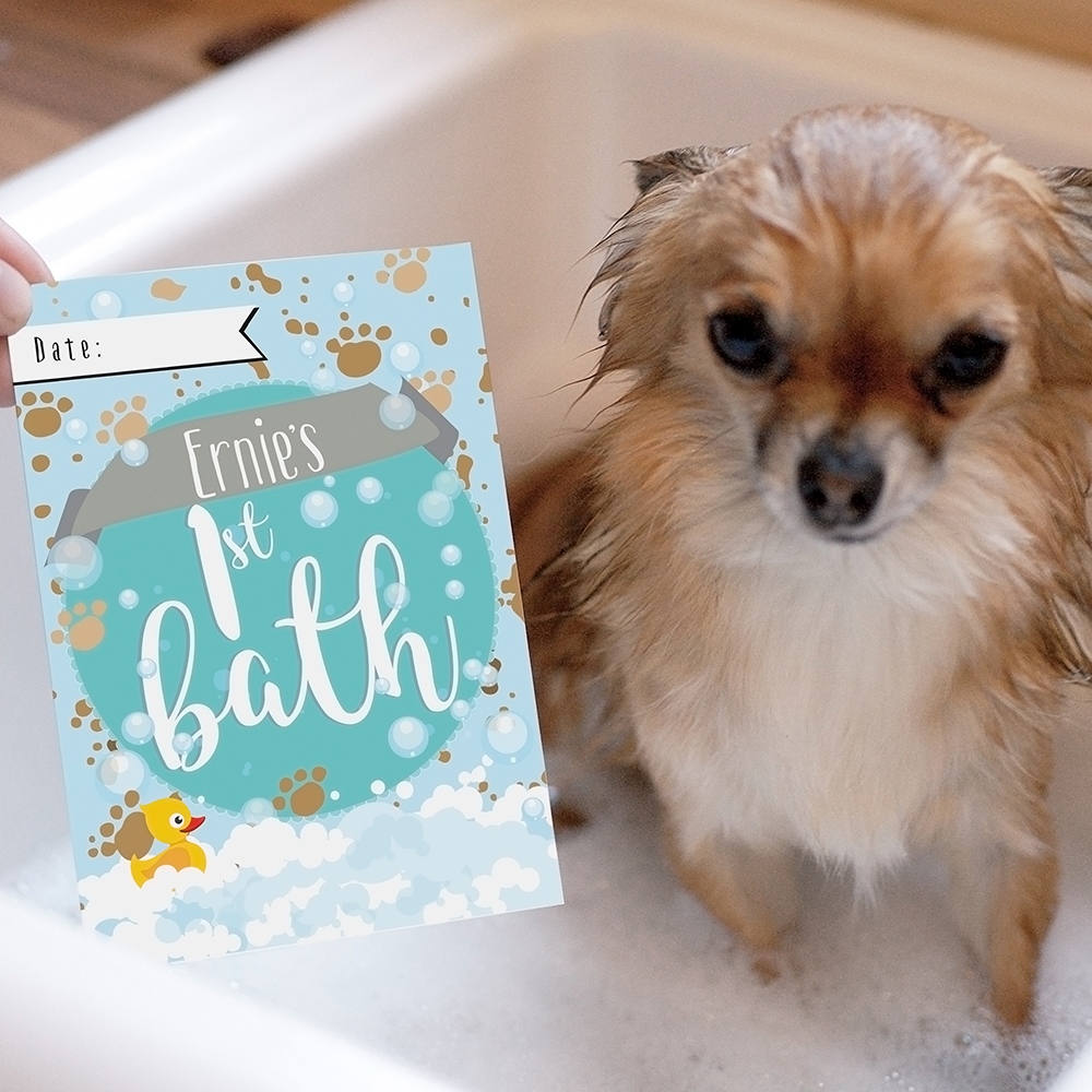 Picture of Personalised Puppy Cards: For Milestone Moments
