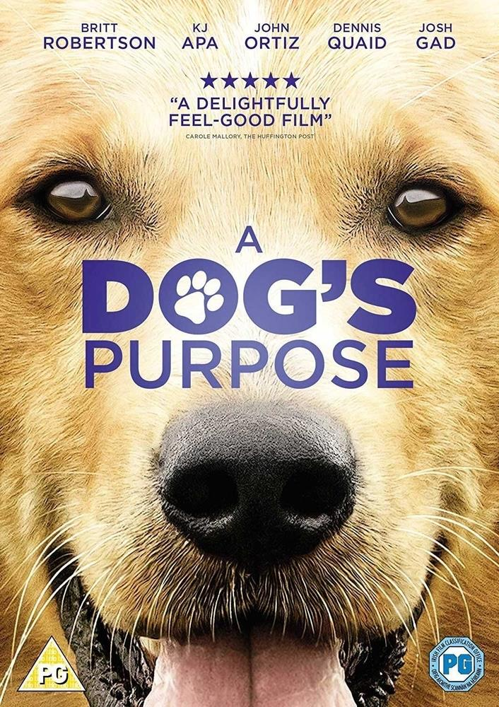 Picture of A Dog's Purpose DVD