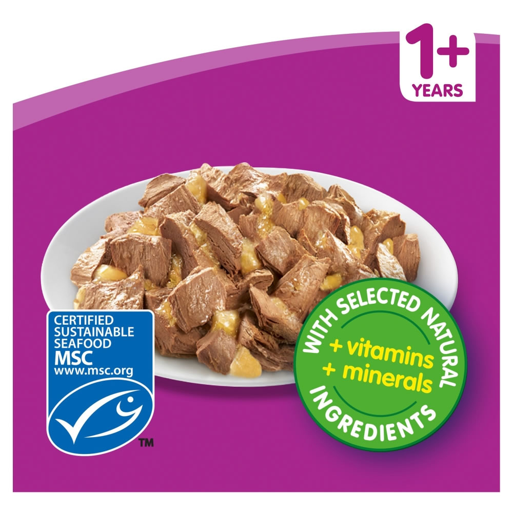 Picture of Whiskas 1+ Fish Selection in Jelly Cat Food Mega Pack (40 x 100g)