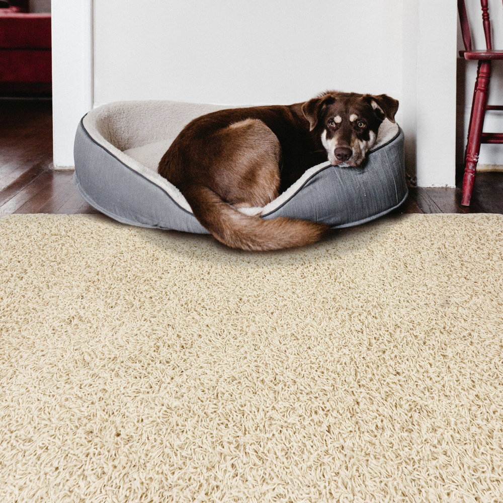 Picture of Athen's Shaggy Cream Rug