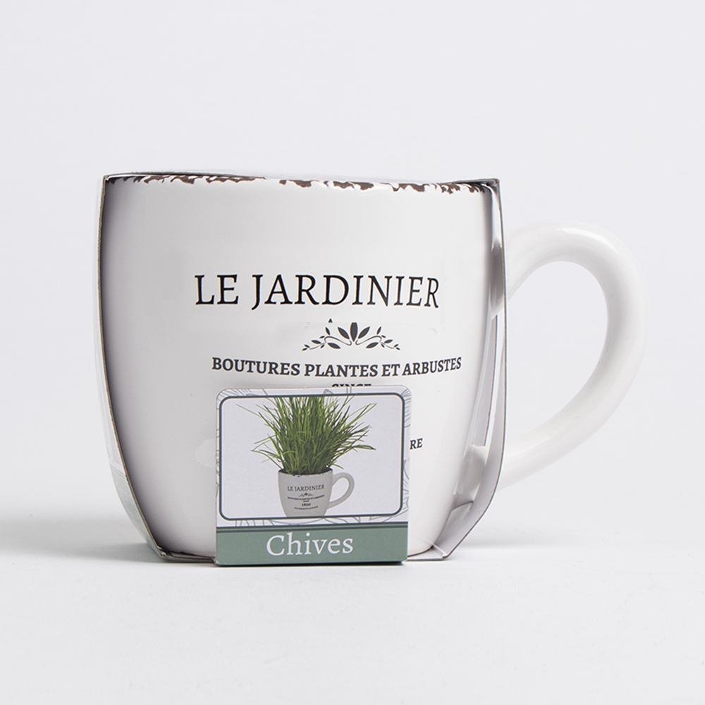 Picture of Bee's Seeds: Le Jardinier Herb Grow Set - Chives