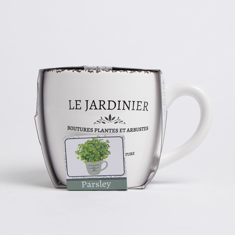 Picture of Bee's Seeds: Le Jardinier Herb Grow Set - Parsley