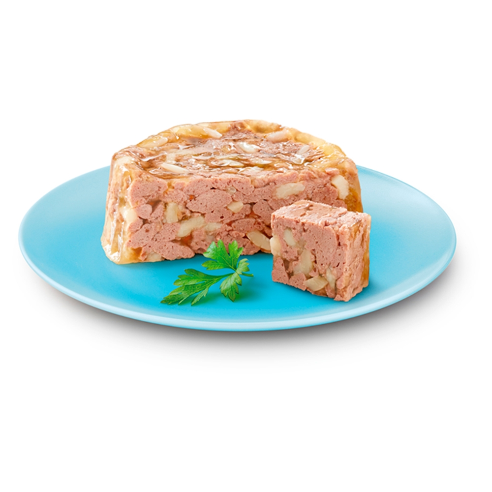 Picture of Cesar Senior 10+ Wet Dog Food in Delicate Jelly (24 x 150g)