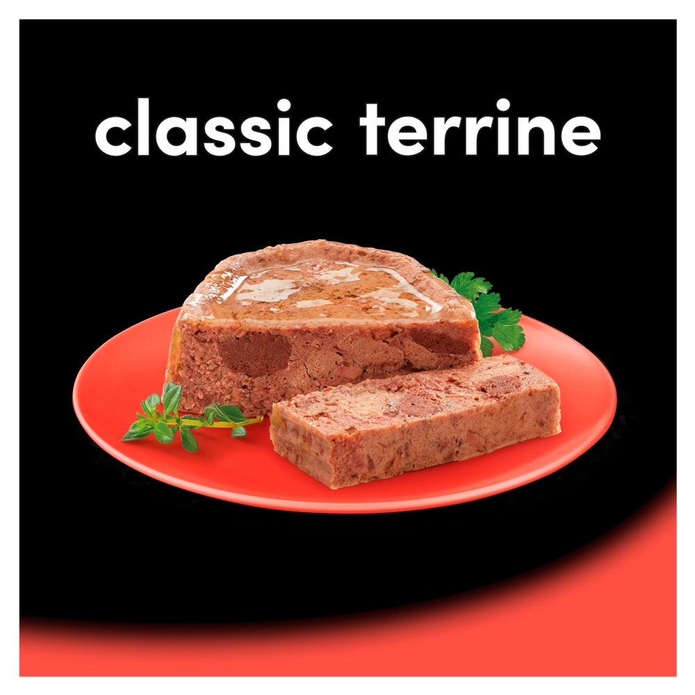 Picture of Cesar Classics Wet Dog Food Terrine Mixed Selection (24 x 150g)