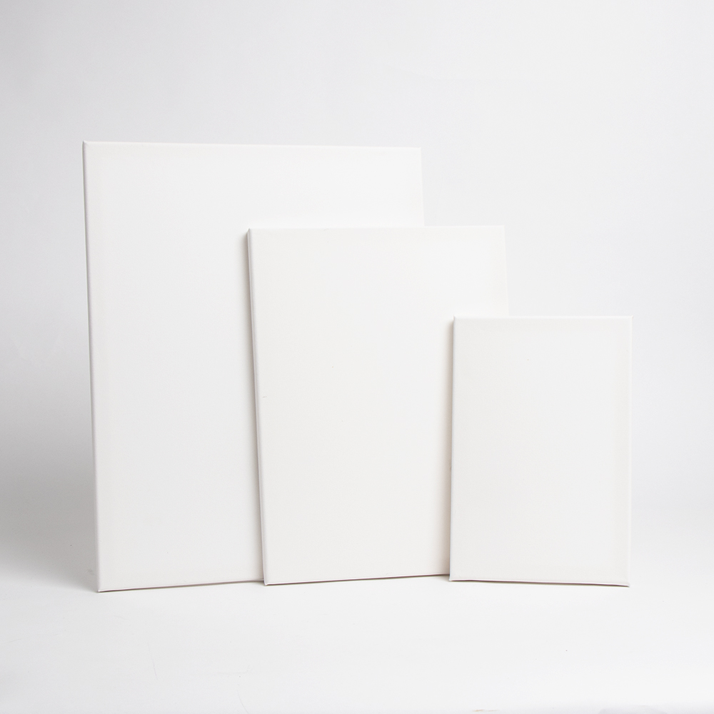 Picture of Colvin & Co: 3 Assorted Artist Canvas 3 Pack