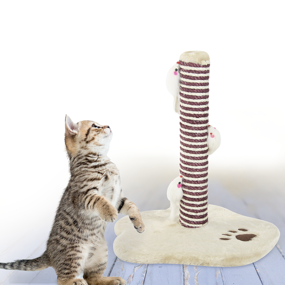 Picture of My Pets: Cat Scratch Post