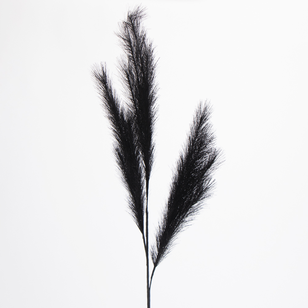 Picture of Forever Faux Black Pampas Grass 5 Pack