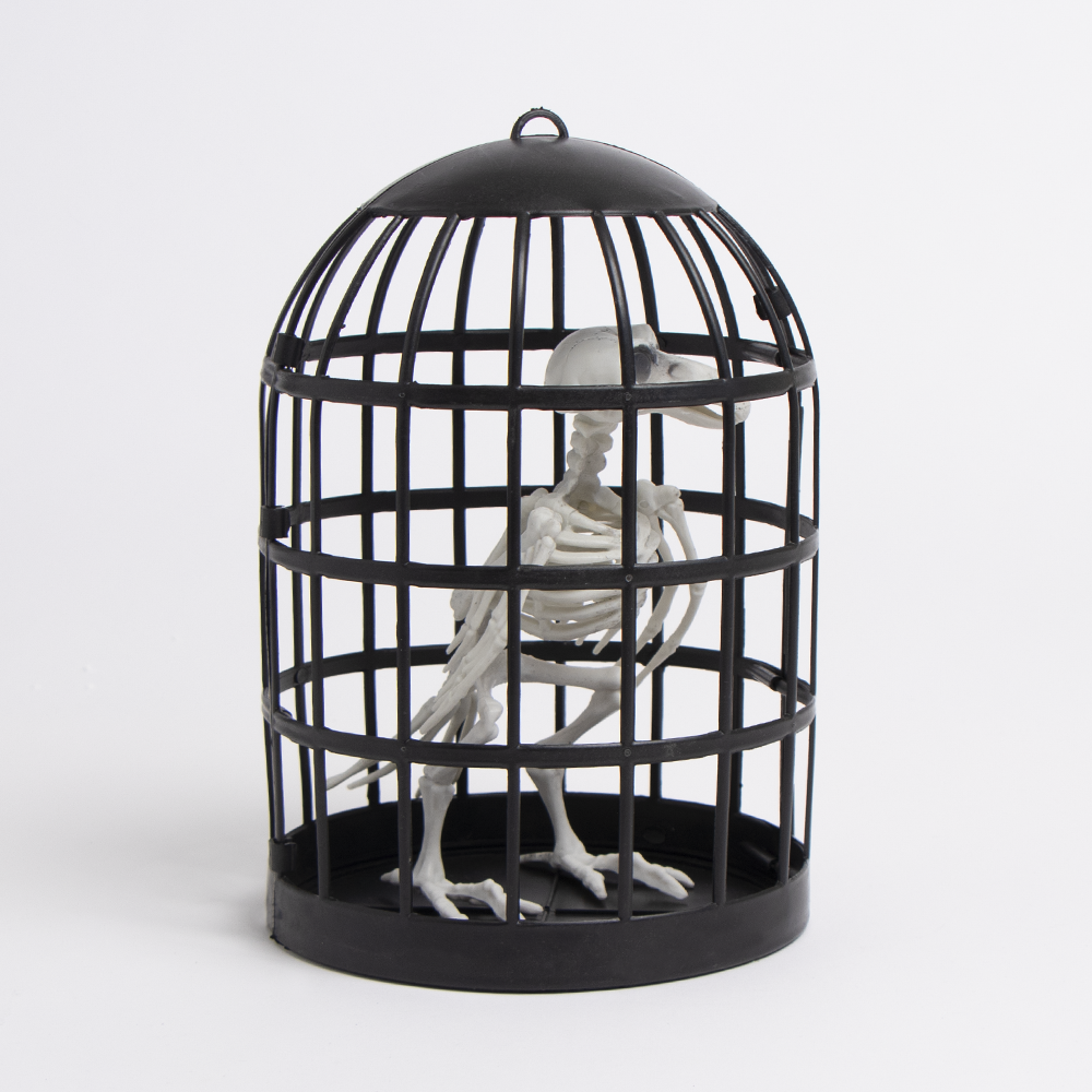 Picture of Haunted House: Caged Crow